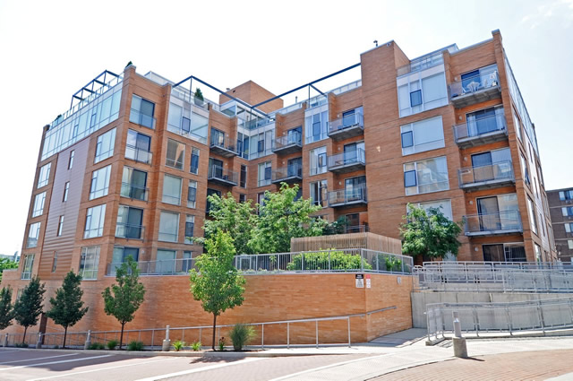1720-1740 Oak Sienna Court Evanston